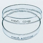 Petri Dish, Pyrex, 100 x 15 mm